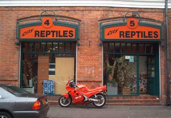 Cityreptiles